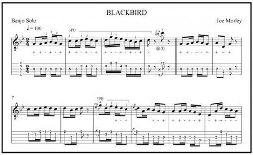 Blackbird Banjo Solo By Joe Morley A Grade Eight Piece Sheet