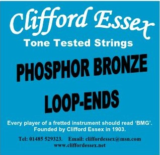 "SINGLE NICKEL OR PHOSPHOR BRONZE ROUND WOUND LOOP-END STRINGS. 0.16"" - 0.32"""