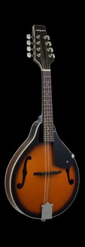 ARIA AM-20 MANDOLIN. THE COMPLETE PACKAGE.